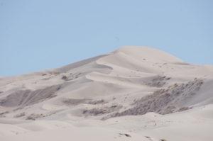 Dunes vierges